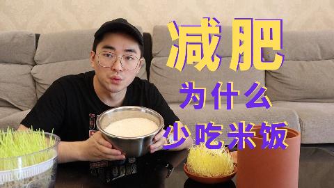 【平平】为什么减肥连米饭都要少吃?硬核评测让你看看米饭里面的糖究竟有多少!