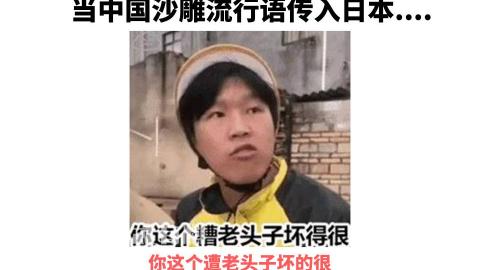 """当中国沙雕流行语传入日本?""""这就是你说的黄袍加身?你这个糟老头子坏的很!!。"""