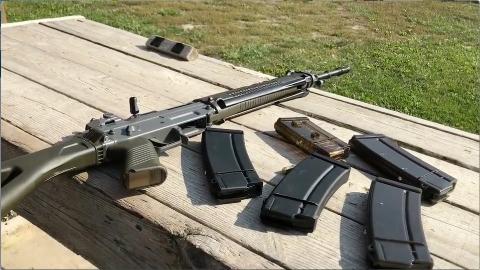 【Instagram枪械短视频】瑞士军工SG550/PE90射击和细节展示