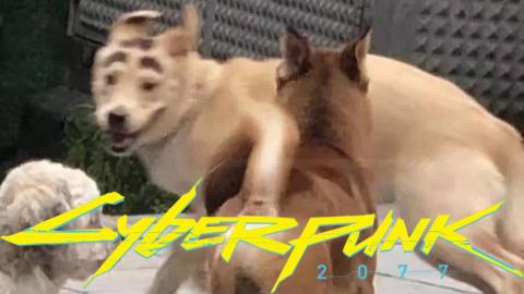 《赛博朋克2077》狗子MOD0.2