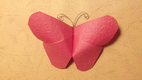 教你折一只漂亮的小蝴蝶,制作过程非常简单,最后一步最关键!