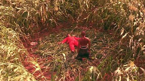 红高粱一部对性崇拜的电影,让你看看一个女人如何让一群男人去为自己疯狂