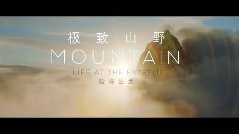 【纪录片】极致山野 险境生灵 1【双语特效字幕】【纪录片之家爱自然】