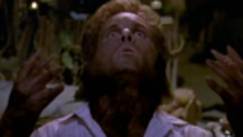 《魔怪世界》男子被神秘野兽抓伤,夜里竟然性情大变,双眼赤红浑身长毛