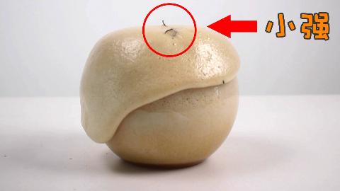 把蟑螂放进一个高速膨胀的海绵球里会如何?高能!