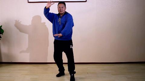 太极拳如何做到身体带动手臂的转动实现整体运动,内家拳动作讲解