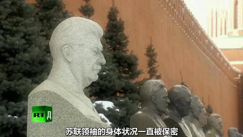 RT 苏联文件:领袖和医士(2012)水山汉化