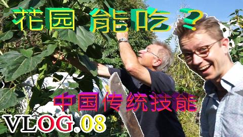 德国老爸将中国人的祖传本领发扬光大,打造400平米可以吃的花园