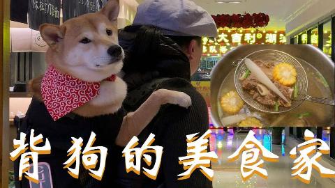 长安一条柴:寒冷的冬季,和狗子一起吃一顿潮汕火锅吧!
