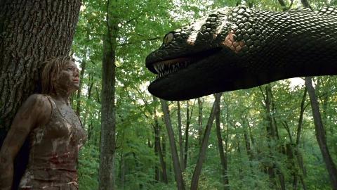 几分钟吐槽《狂蟒之灾》系列,美女和大蛇一对比目测巨蟒30米能一口吞掉一个美女!