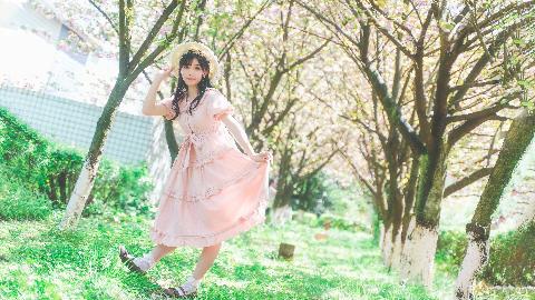 【喵扑酱】离春天最近的街 ❀ 来带你去看樱花雨哟~