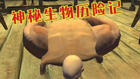 【王老菊】奴隶阿飞的励志人生01