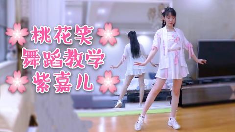 【紫嘉儿】桃花笑✿舞蹈分解教学✿镜面教程
