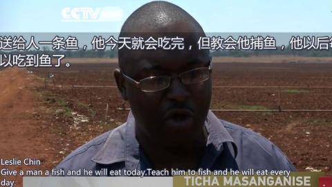 外国网友评论 中非农业合作,授人以鱼,不如授人以渔