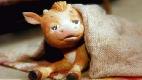 【1984】苏联经典动画作品-狼与小牛