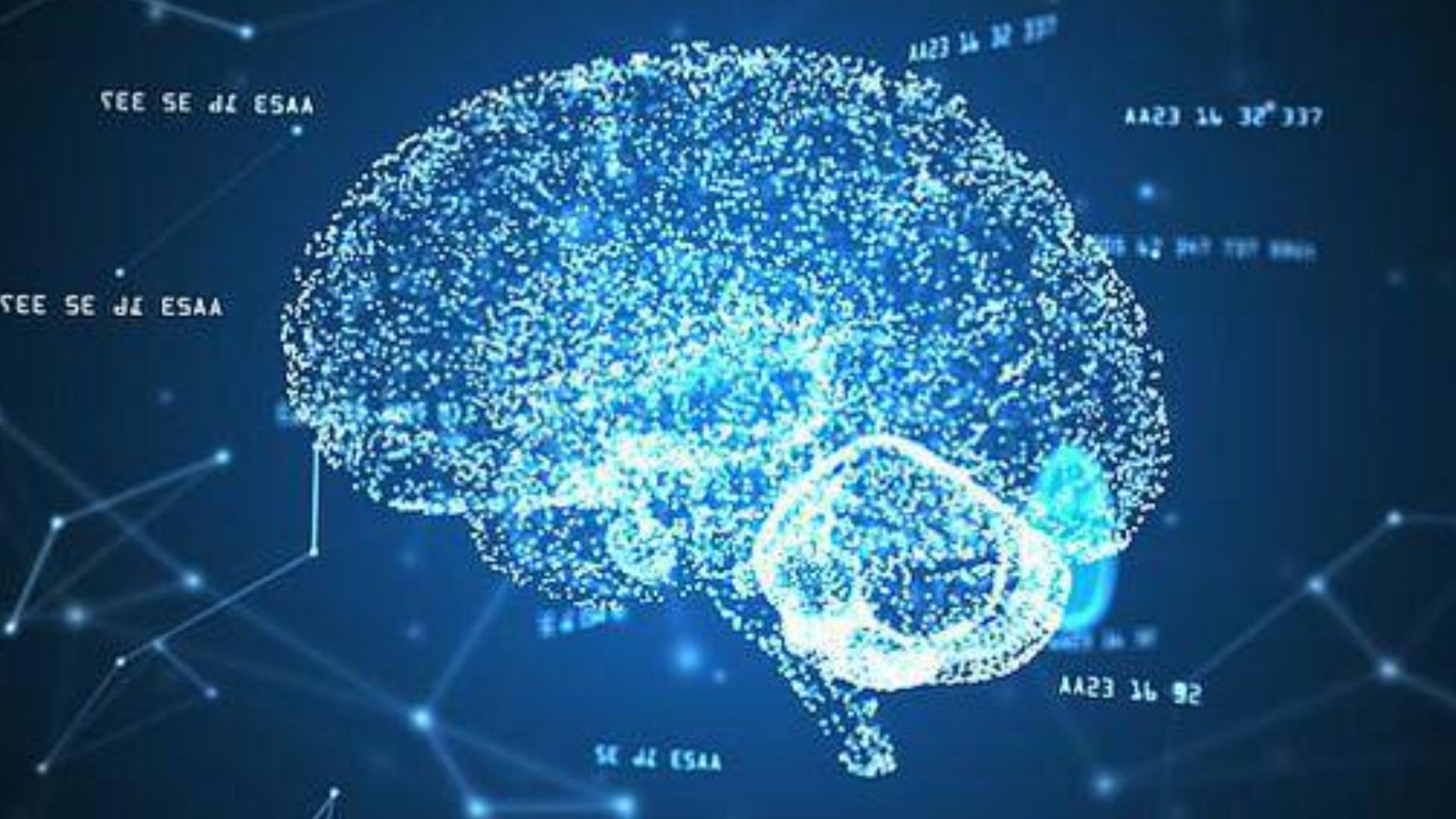 提高记忆力 最强大脑训练 如何提升记忆力 奇迹记忆法 快速阅读  疯狂记忆 思维导图训练教程