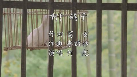 啊 鸽子(李馥林作品)