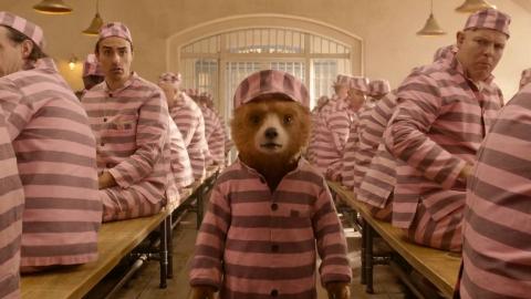 小熊被关进人类监狱,结果几天就成了监狱老大,一部喜剧动物电影
