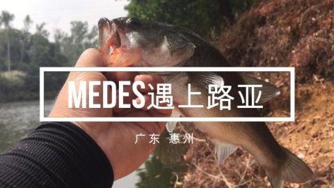 罕见,一向钓野水的米德居然也会钓鲈鱼?