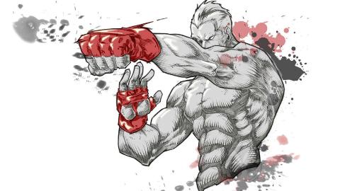 【综合格斗进化论·后篇】综合武力比拼:UFC时代~至今【自制字幕】