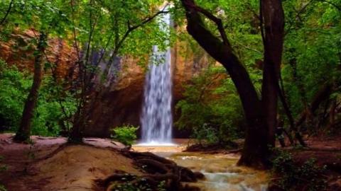 来助眠空间,倾听瀑布的声音,感受大自然的美