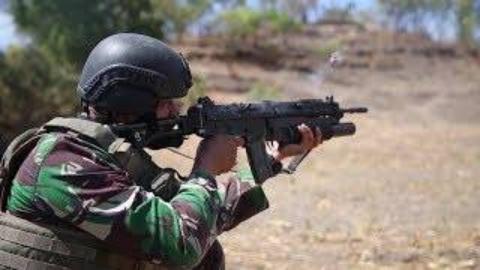 美军马润与印度尼西亚海军陆战队合作实弹射击训练