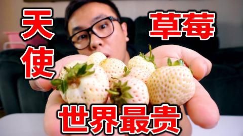 试吃700元一斤的草莓,一颗就要15元