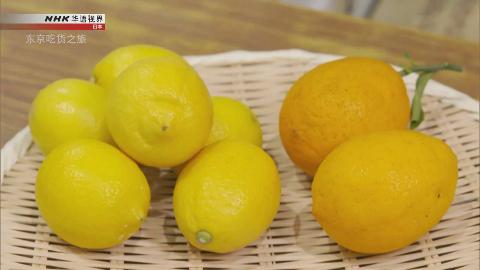 纪录片.NHK.东京吃货之旅:柠檬.2019[中文英文双版本]