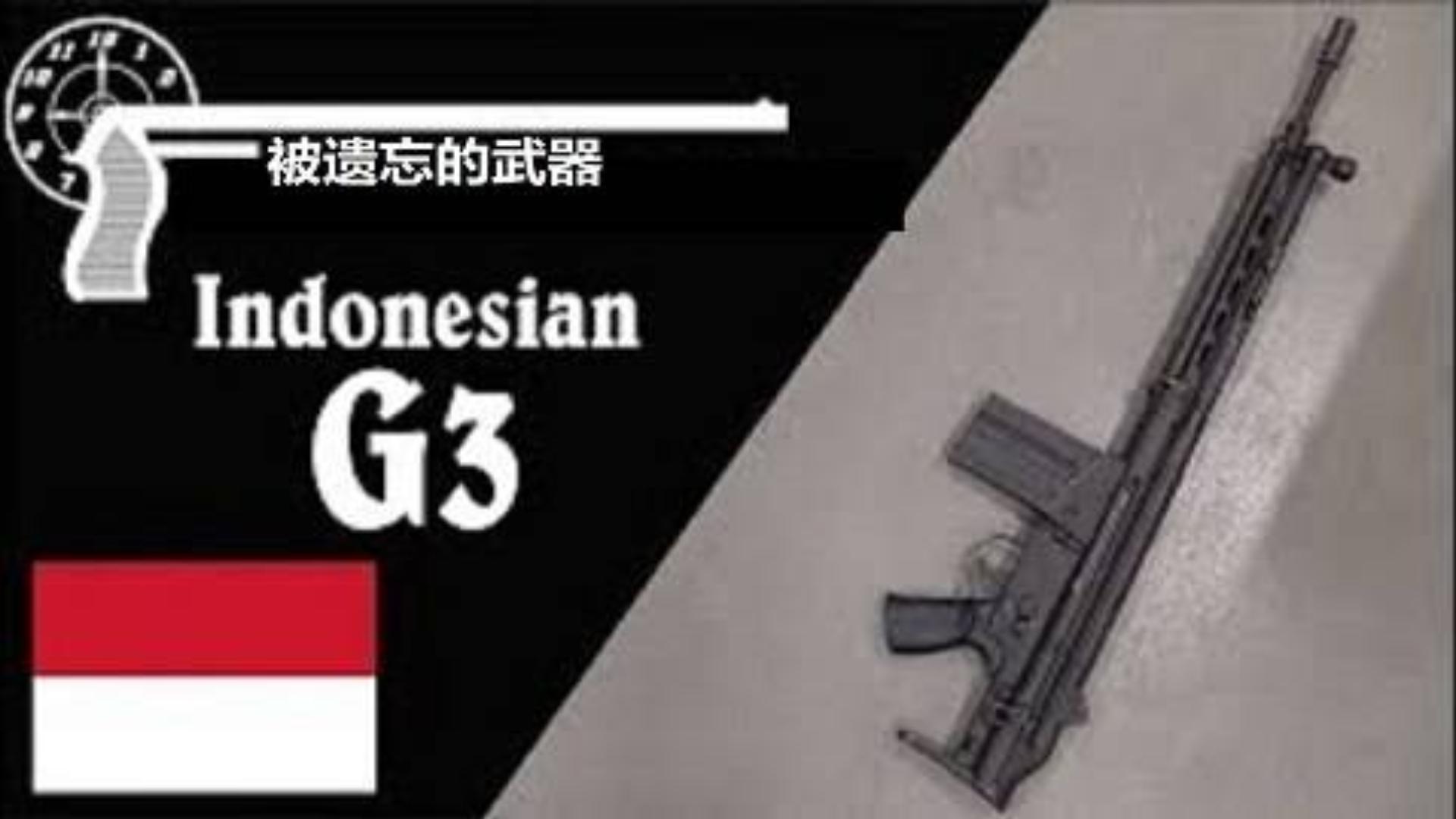 【搬运/已加工字幕】印度尼西亚伸缩托G3步枪 历史介绍
