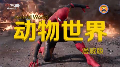 【动物世界·漫威篇】用《动物世界》的方式打开《蜘蛛侠》!