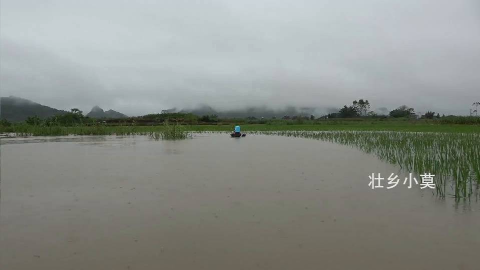 小莫河里放长江钓,不料当晚突发洪水,第二天渔获真多,大丰收了