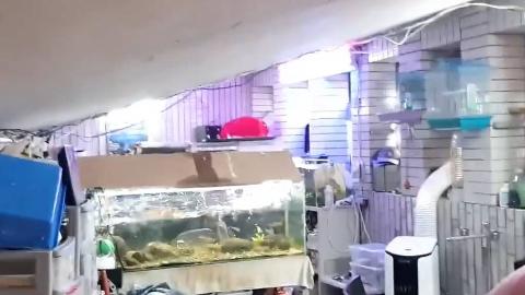 台湾花莲6.7级地震 地铁站水管爆裂、全线紧急停运