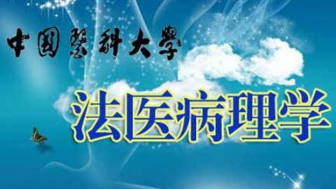 【搬运】法医病理学__中国医科大学