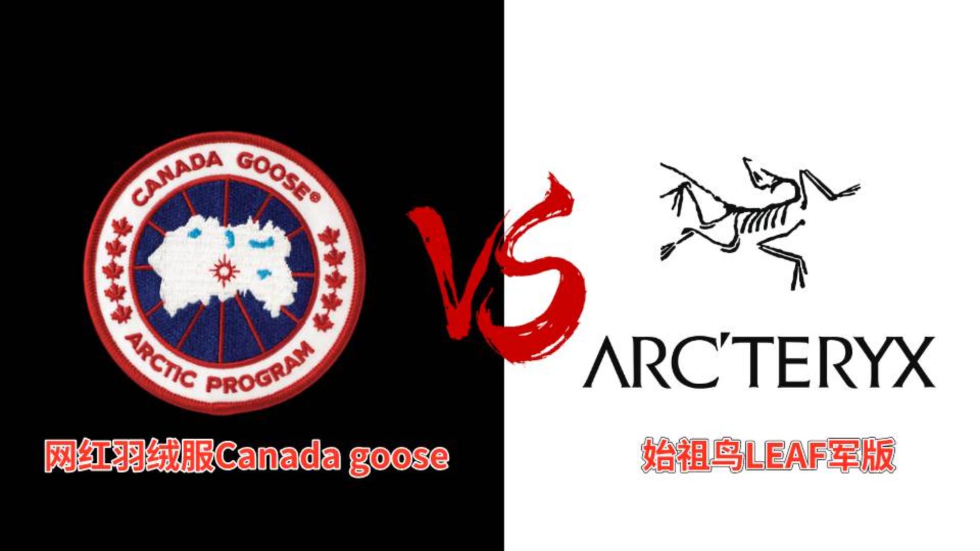 【始祖鸟军版VS加拿大鹅】零下20度, 始祖鸟和加拿大鹅如何面对暴雪的考验?