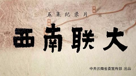 【纪录】西南联大(全五集/无标印)