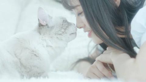 我今天就是要rua爆这只小猫咪给你康康~!ヾ(≧∪≦*)ノ〃