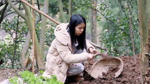 家里的水缸打碎了,农村姑娘挖点泥巴,种了几株花,效果还挺好。