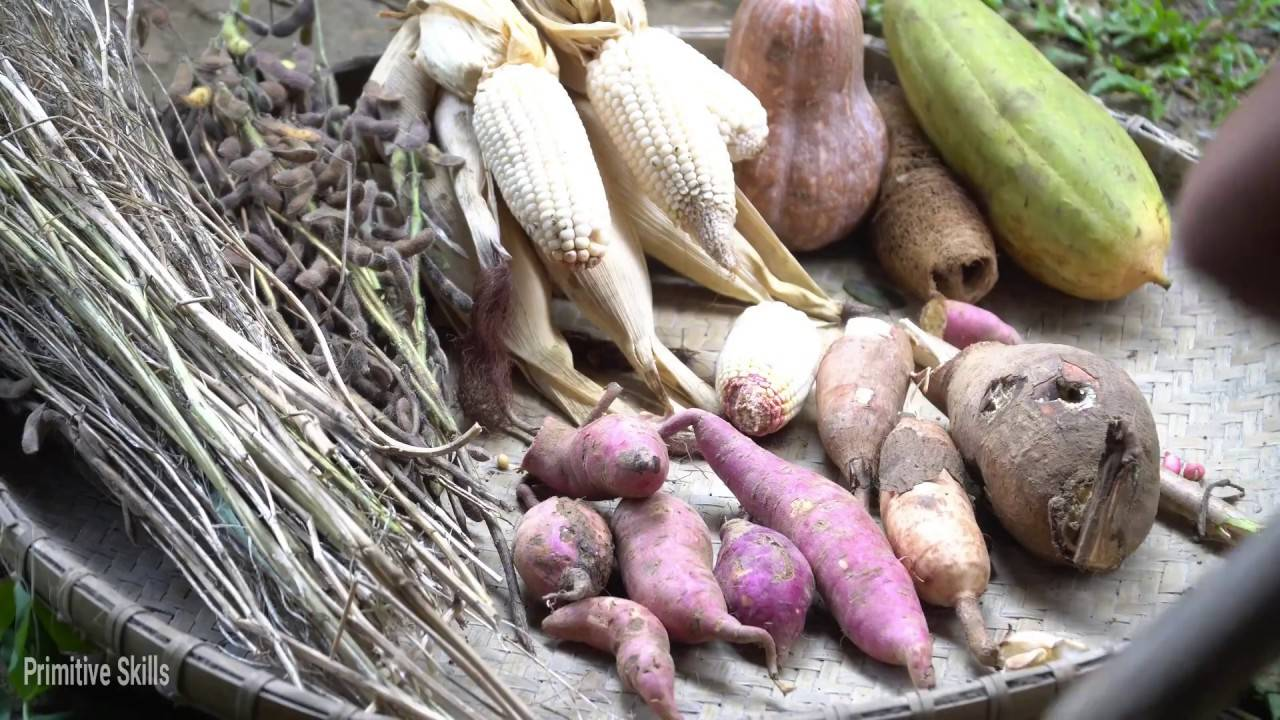 野外技术:收集种子(黄豆,南瓜,玉米,红薯,木薯,丝瓜,...)
