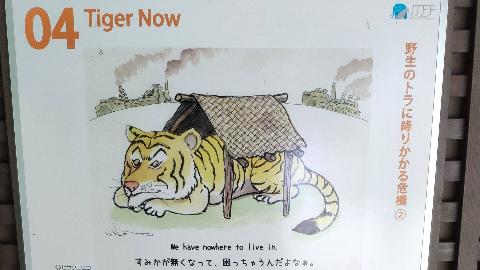 Have a way 高考英语 1.高中英语零基础词汇语法导学班-りき(2020年版)