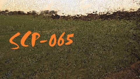 【SCP基金会】SCP-065