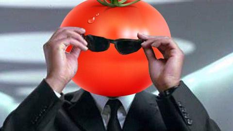 【老番茄】王牌特工老番茄