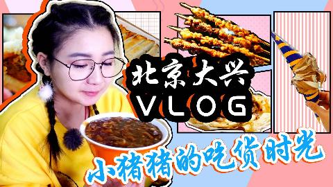 【小猪猪特能吃】北京大兴一日游!穿越大半个北京来吃炒肝儿包子,1块钱甜筒收尾!
