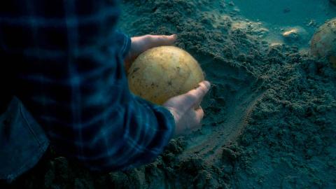 老人在岸边发现怪蛋,靠近一看,却被里面的东西吓的后退
