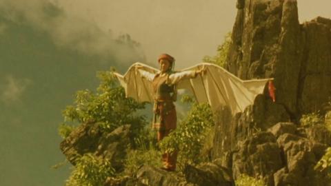 1998年的电影,两人日本人来到中国找到了鸟人