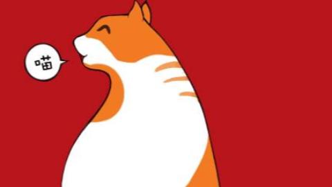 小橘猫翻唱《乌兰巴托的夜》