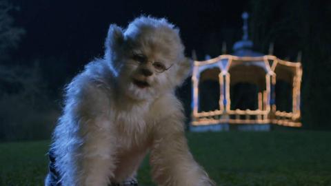 小男孩拥有狼人的血脉,月圆之夜就会变成狼人,一部喜剧奇幻电影