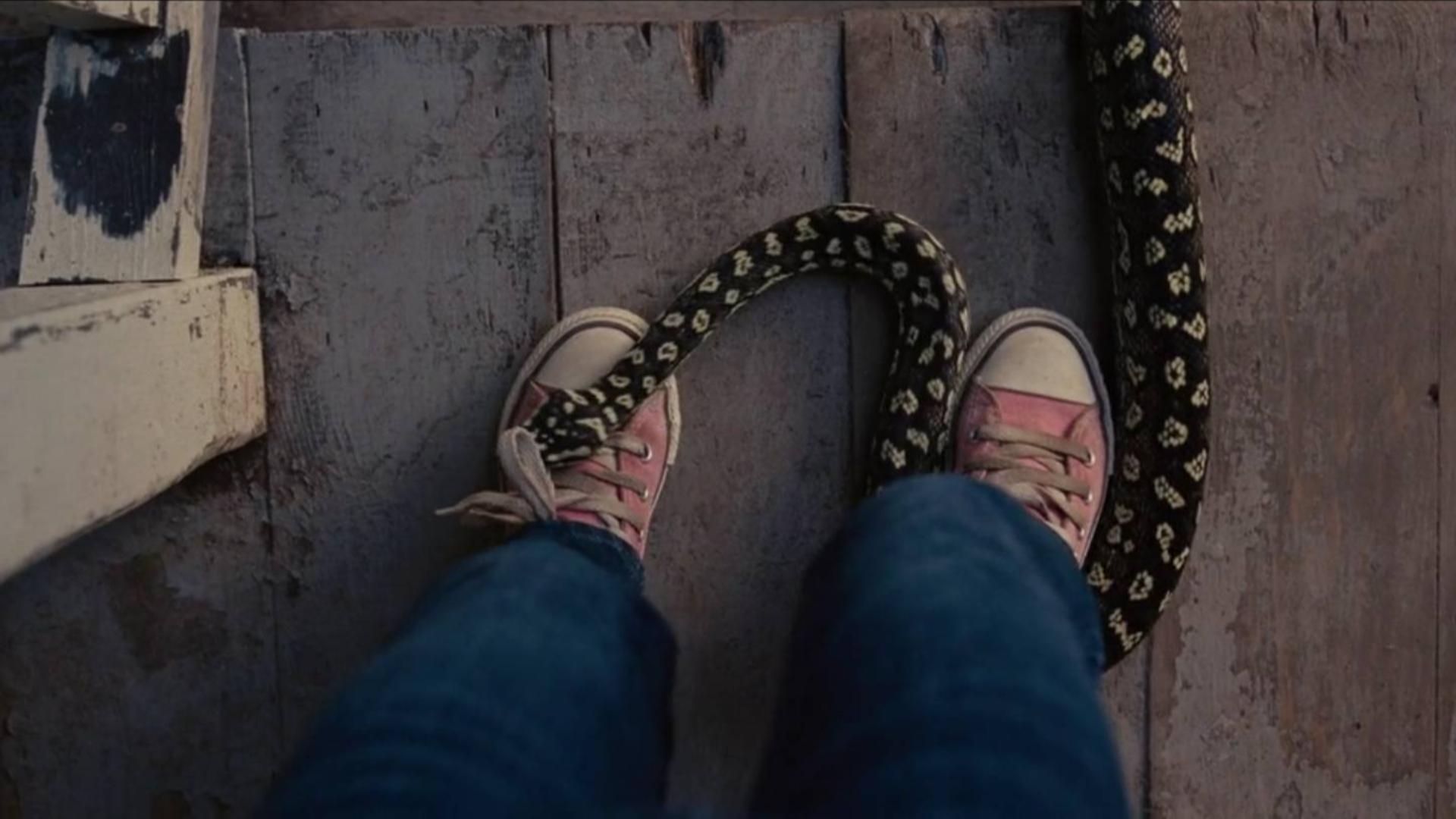 剧情片:爸爸为哄女儿开心买下动物园,结果早上醒来院子里全是蛇