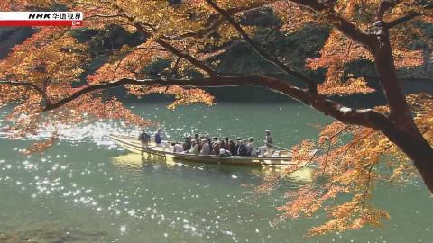 纪录片.NHK.京都之美.嵯峨野:喧嚣浮世中的静谧之地.2019