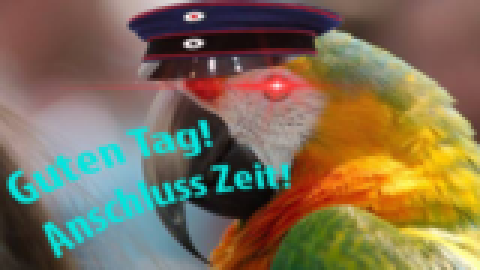 【搞笑】你见过鹦鹉会说德语,但你见过鹦鹉会走正宗德式正步吗?
