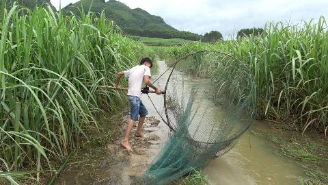 大型水库开闸泄洪,小伙用6米大网布置捕鱼陷阱,收获太棒了!